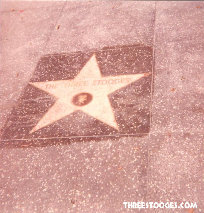 The Three Stooges Star on the Hollywood Walk of Fame revealed!