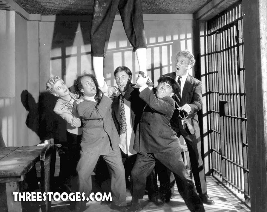 Larry Fine Archives | Page 2 of 16 | The Three Stooges
